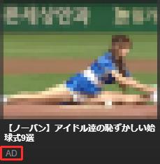 VJAVの広告